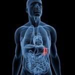 Symptoms of Ruptured Spleen