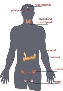 glucosamine for shoulder pain