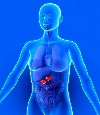 liver functions with diabetes